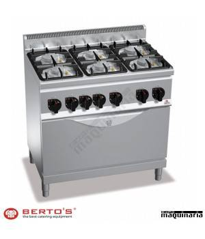 Cocina gas 6 fuegos con horno RMG6F6PW+T ECO POWER