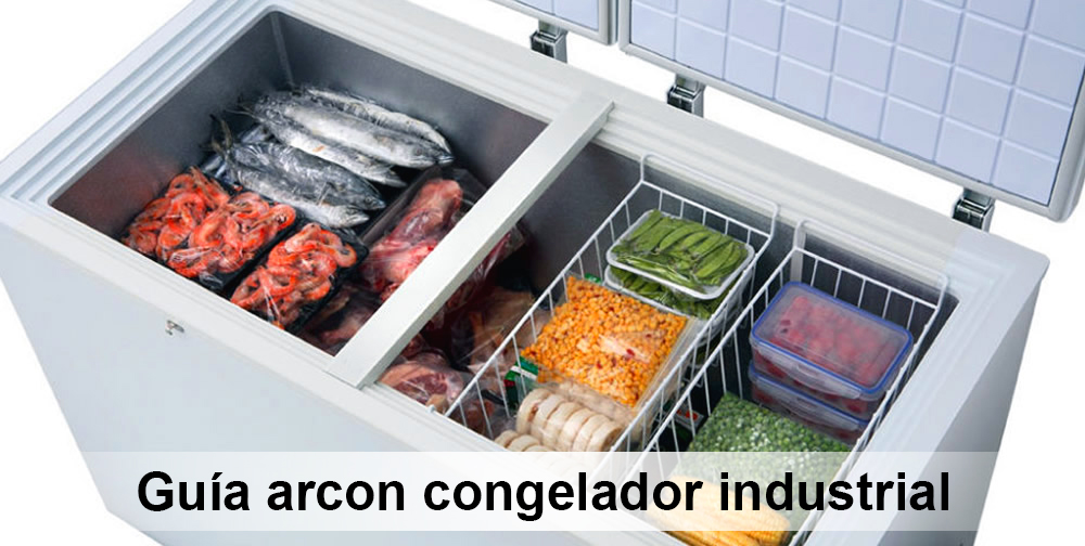 Guía de Arcon Congelador Industrial