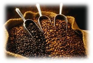 Muestras de cafes en grano en diferentes tostados y coloridos.